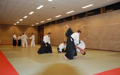 Den Haag's Hagukami dojo will demonstrate Aikido